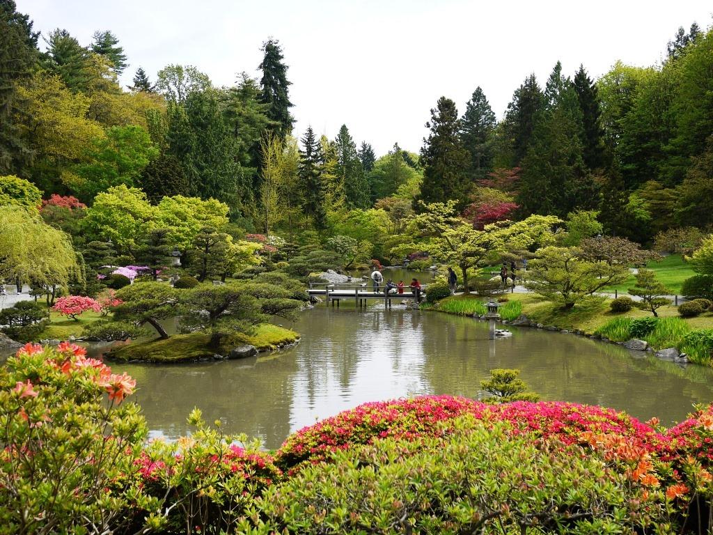 Seattle japanese garden mel carson for Japanese garden