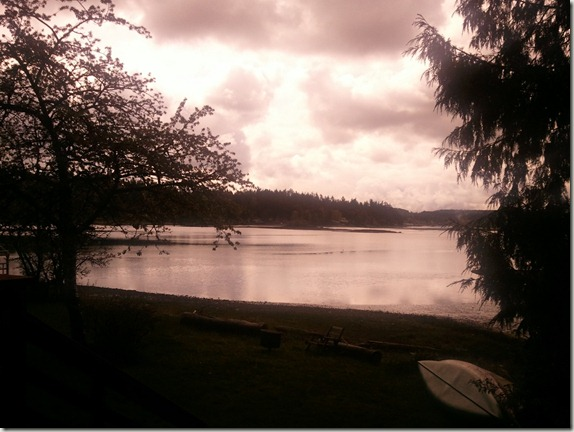 gig-harbor-windows-phone-camera